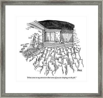 An Assembly Of Cats In A Backyard Led By Three Framed Print