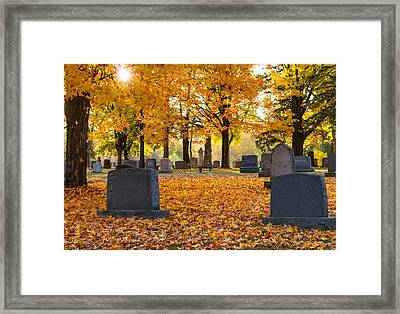 Forest Hill Autumn Light  Framed Print by Mary Amerman