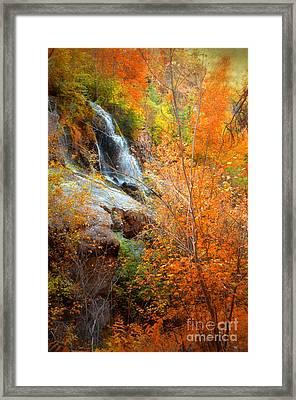 An Autumn Falls Framed Print by Tara Turner