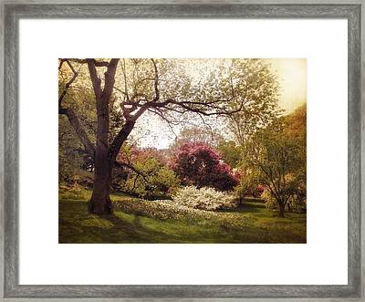 An Early Spring Framed Print by Jessica Jenney