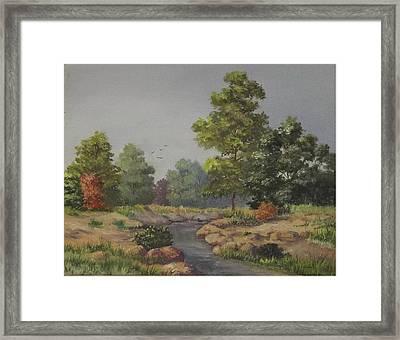 An East Texas Creek Framed Print by Wanda Dansereau