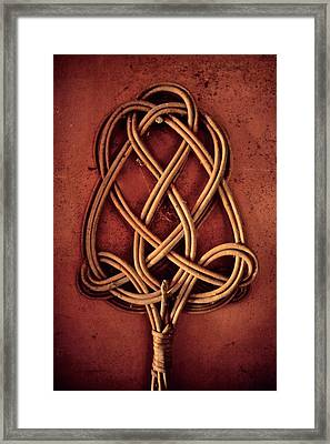 An Element Of Domestication Framed Print