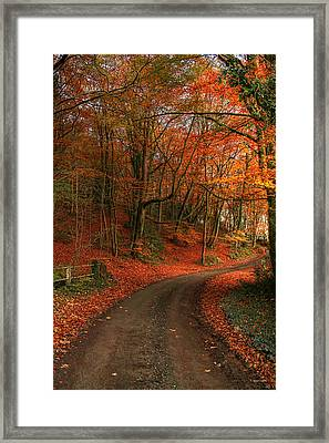 An English Autumn Framed Print