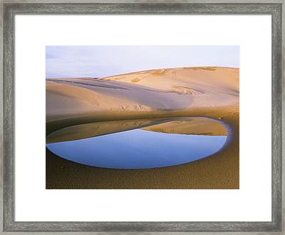 An Ephemeral Pond Mirrors The Umpqua Framed Print by Robert L. Potts