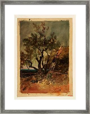 An Evening Effect Trees At Knockholt Framed Print by Celestial Images