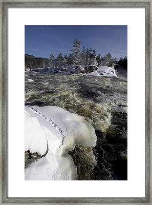 An Icy River In Maine, Usa Framed Print