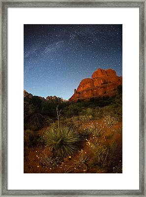 An Image Of Seasonal Confusion In Arizona Framed Print by Mike Berenson