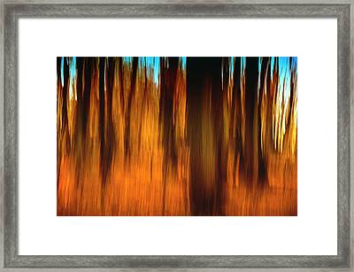An Impressionistic In-camera Blur Framed Print by Rona Schwarz