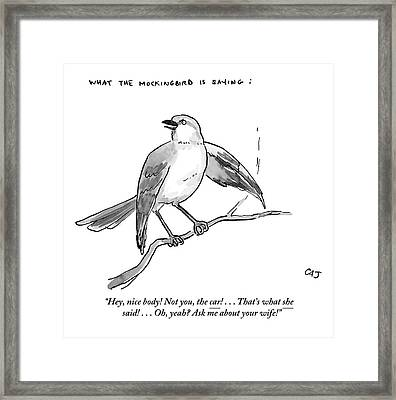 An Incendiary Mockingbird Is Depicted Framed Print