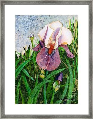 An Iris For Lily Framed Print by Pamela Iris Harden