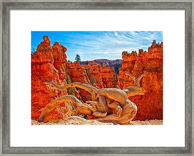 An Object For Imagination Framed Print