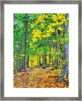 An October Walk In The Woods. 1 Framed Print