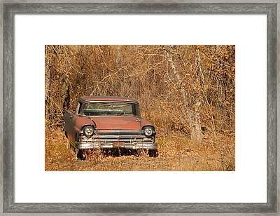 An Old Beauty Framed Print by Jeff Swan