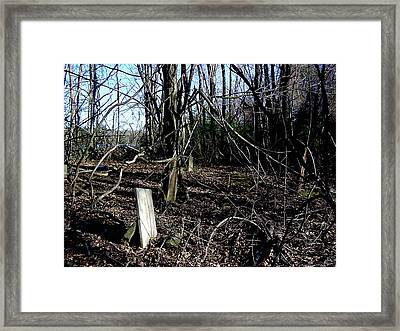 An Old Colonial Graveyard Framed Print