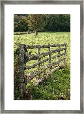 An Old Gate Framed Print