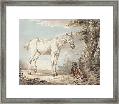 An Old Grey Horse Tethered To A Tree A Boy Resting Nearby Framed Print by Paul Sandby