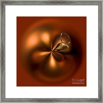 An Orb Of Orange Framed Print by Anne Gilbert