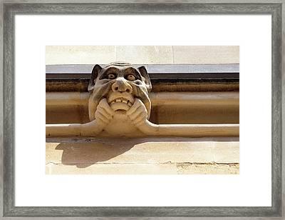 An Oxford Grotesque Framed Print