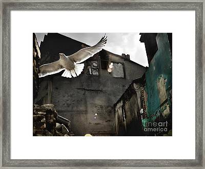 An Unexpected Messenger Framed Print by Michel Verhoef