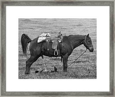 An Unsuspecting Cowboy Grabs A Catnap On The Prairie While His H Framed Print by Underwood Archives