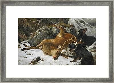 An Untimely End Framed Print by Celestial Images