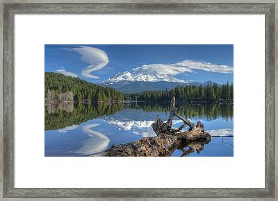 An Unusual Twist Framed Print