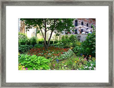 An Urban Oasis Framed Print by Dora Sofia Caputo Photographic Art and Design