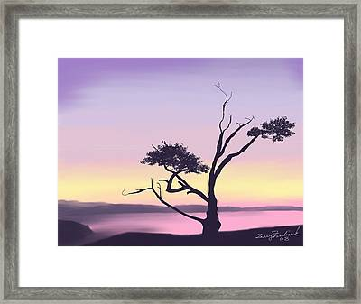 Anacortes Framed Print by Terry Frederick