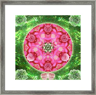 Anahata Rose Framed Print