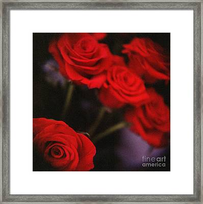 Analog Photo Of Bunch Bouquet Of Red Roses Framed Print by Edward Olive