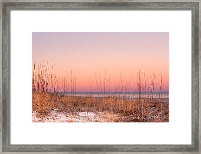 Anastasia Beach Dunes Sunset Framed Print