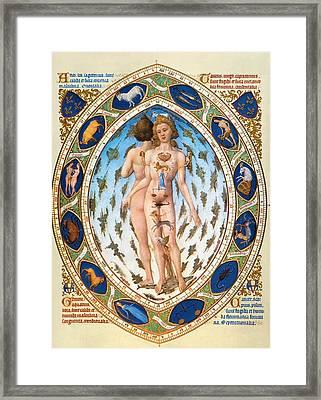 Anatomical Man Framed Print by Granger