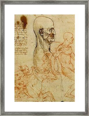 Anatomical Study Of A Man's Head Framed Print