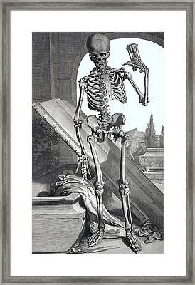 Anatomium Sceletus Framed Print by Daniel Hagerman