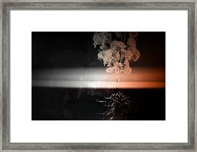 Anchor Framed Print by Mark  Ross