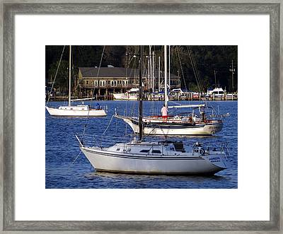 Anchored Framed Print