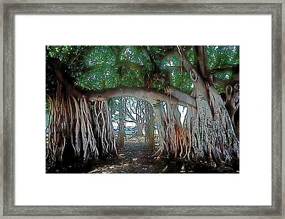Ancient Arch Framed Print by Terry Reynoldson
