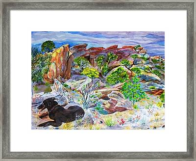 Ancient Camp Ground And Labrador Framed Print by Annie Gibbons