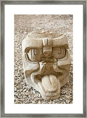 Ancient Carving Of Head Framed Print by Ellen Thane