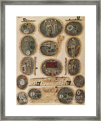 Ancient Celtic Cemetery Hallstatt Framed Print by Science Source