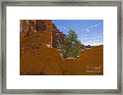 Ancient Cliff Dwelling At Palatki Framed Print by Ellen Thane
