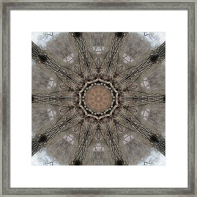 Framed Print featuring the digital art Ancient Cottonwood by Trina Stephenson