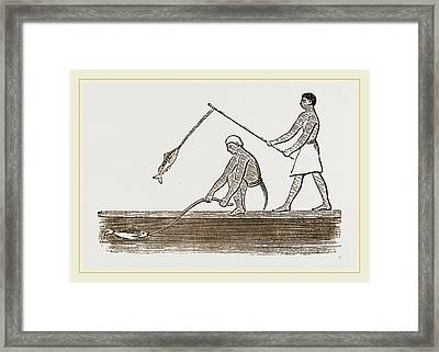 Ancient Egyptians Angling Framed Print by Litz Collection