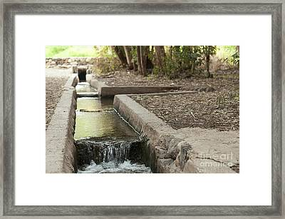 Ancient Irrigation Channel Framed Print by Photostock-israel