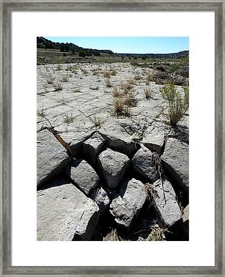 Ancient Lakefront Framed Print by Carlee Ojeda