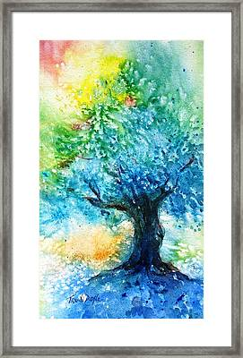 Ancient Olive Tree  Athenas Gift  Framed Print by Trudi Doyle