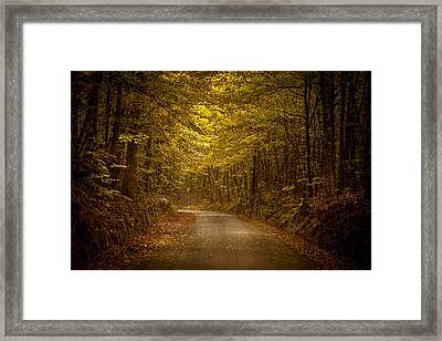 Country Road In Mississippi Framed Print by T Lowry Wilson