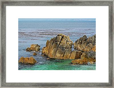Ancient Rocks At Pacific Grove Framed Print