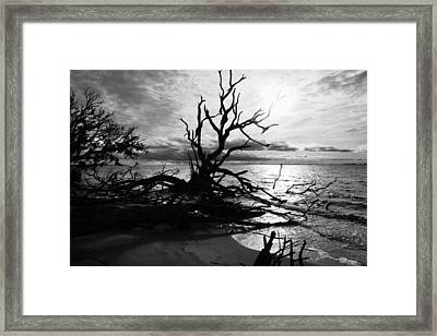 Ancient Sacrifice  Framed Print by Betsy Knapp