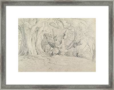Ancient Trees Lullingstone Park Framed Print
